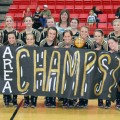 Henrietta's Lady Cats celebrate after winning area Saturday in Eastland.