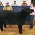 4K Energy Services of Weatherford purchased the grand champion steer from Klayton Hoff of the Henrietta FFA.