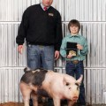Blaine Martin of Joy, a student at Windthorst ISD, showed the grand champion market hog in the Archer County Junior Livestock Show. Blaine is pictured with Market hog Judge Wes Utley.