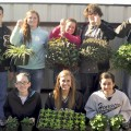 Funds raised in the plant sale benefit the Henrietta FFA.