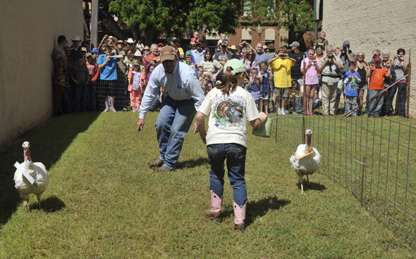 Turkey races proved a popular event during last year's Clay County Turkey Fest.
