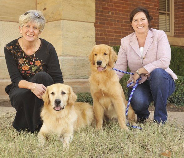 Seven-year-old Hawkeye, with owner Terry Thornton, and 6-month-old Fenn, with owner Kimberley Scattergood, are two of the more than 1,500 Golden Retrievers that will compete in the Golden Retriever Club of America's National Specialty Show and Trial Oct. 20-30.