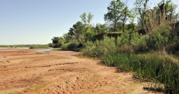 Vegetation line along the Red River, once considered the border between Texas and Oklahoma, near the Waurika Bridge north of Byers.