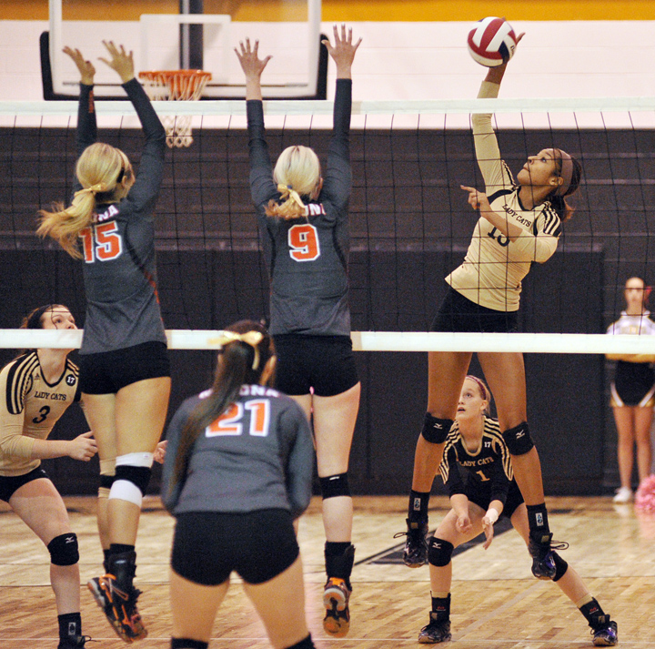 Lady Cat Kamryn Weaver sails a spike past Nocona's front line in the first set of Saturday's win over the Lady Indians. With the victory, Henrietta lays claim to the District 9-3A championship.