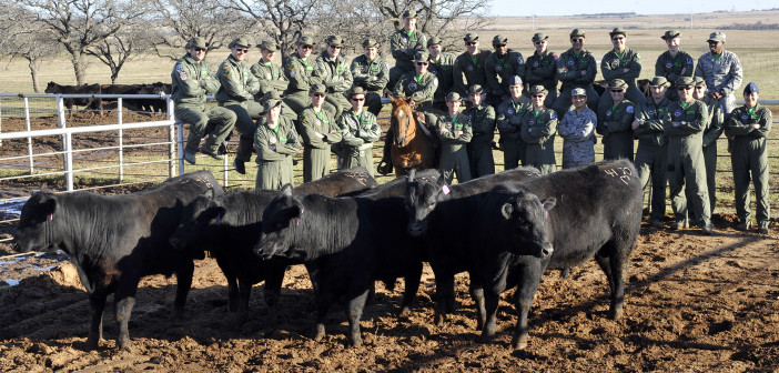 'Fighting Bulls' find photo opportunity at Bellevue ranch